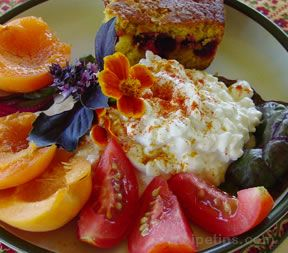 Cottage Cheese Plate Recipe