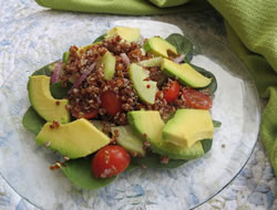 Lime Quinoa and Avocado Salad