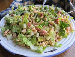 pasta blt salad Recipe