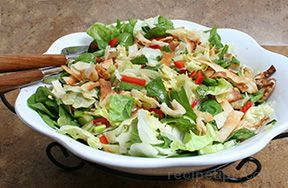 Wonton Grilled Chicken Salad