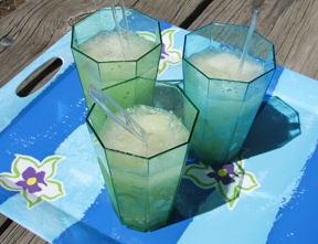 tequila slush Recipe