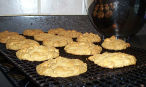 Gingerbread Butterscotch Cookies Recipe