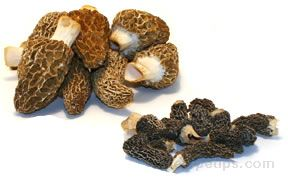 Dried Morels Recipe