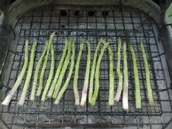 grilling asparagus Article