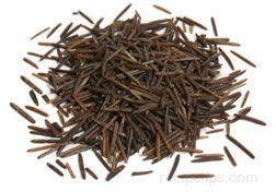 cooking wild rice Article