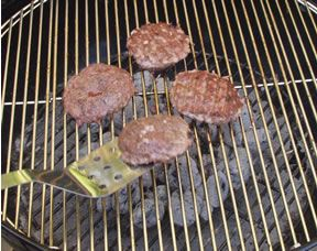 Grilling Basics Article
