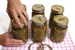 canning methods for vegetables and fruits Article
