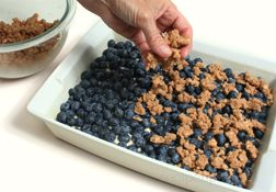 How to Make Blueberry Buckle Article
