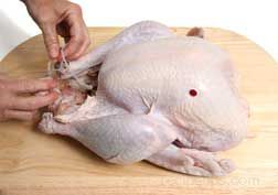 Preparing a Turkey - Turkey Preparation Article
