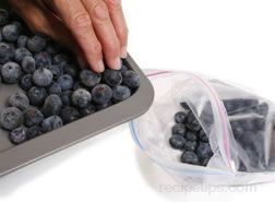 how to freeze blueberries Article