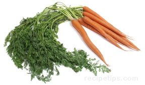 all about carrots Article