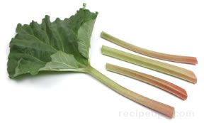 all about rhubarb Article