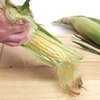 All About Sweet Corn