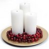 Elegant Cranberry Centerpiece