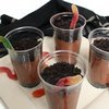 Wiggly Worm Dirt Pudding  Recipe