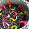 Dirt Pudding with Worms Recipe