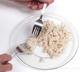 Shredding Chicken Article