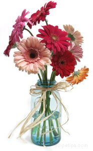 Spring Centerpieces Article