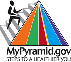 the new food pyramid guidelines Article