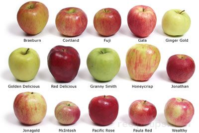 Choose the Best Apple