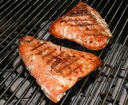 grilling salmon Article