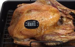 roasting a turkey in an electric roaster Article